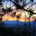 Springbank Sunset