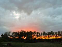 sunset-late