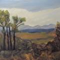 Leighton Oil Early Summer