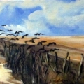 Meadow Flock
