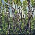 birch-tryptych