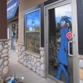 Stampede Window Painting