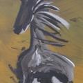 Stampede Horse