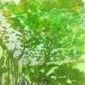 Tree Ceiling