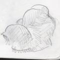 cat-quick-sketch