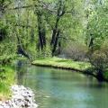 Bowness Park Lagoon