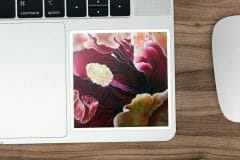 Macro Floral Sticker