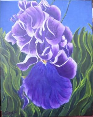 Iris Painting Acrylic on Canvas 16 X 20