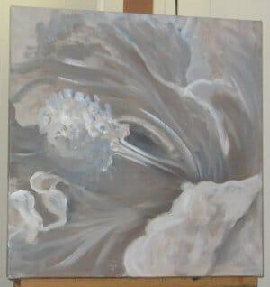Hibiscus Macro
