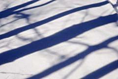 Snow Shadows