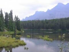 Johnston Lake