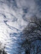 Cloud Sway