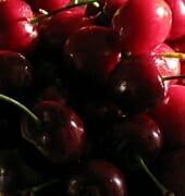 Cherries Macro