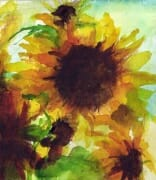 Sunflower Watercolour