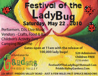 ladybug-festival