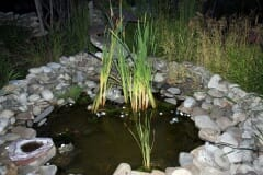 healing garden pond