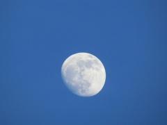 moonrise-feb