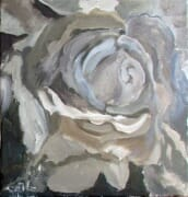 rose3a-2011_sm