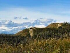 bowmont-rolling hills