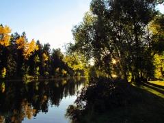 lagoon-reflections
