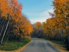 Fall-springbank