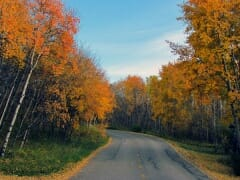 Fall-springbank