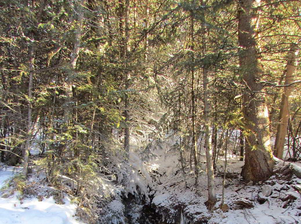 mountain stream winter