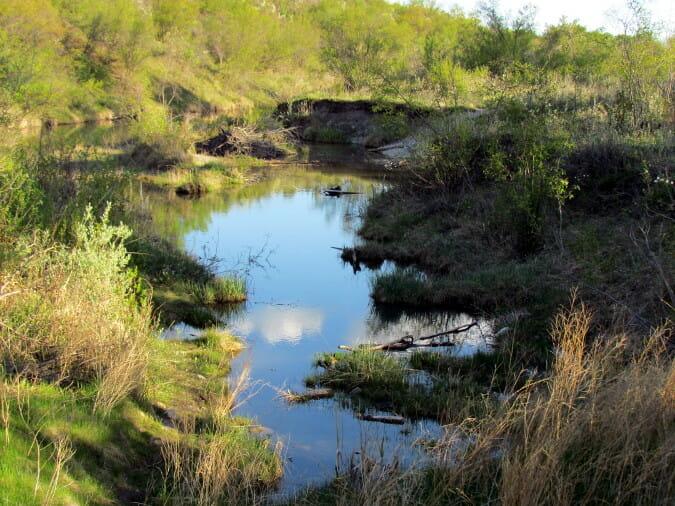 beaver-dam-flats