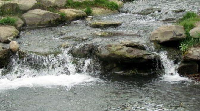 stream-movement